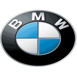 bmw-logo-263x351