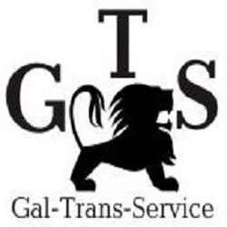 logotip_g-t-s_angl