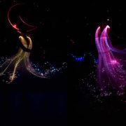 волшебные балерины